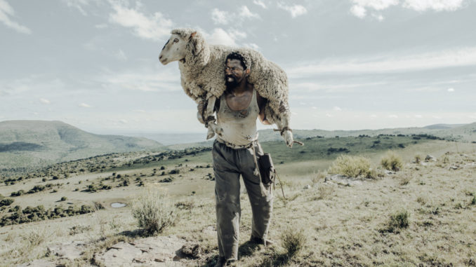 Qubeka movie up for Oscar selection -